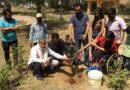 अप्रैल माह के प्रथम दिवस को अप्रैल कूल डे मनाते हुए एक्टिव सिटीज़न टीम के सदस्यों के साथ पौधा रोपित